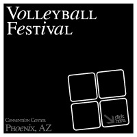 Volleyball Festival 2019